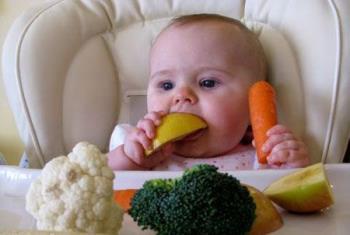 طرز تهیه انواع دسر و عصرانه برای نوزادان – بخش دوم