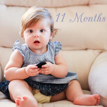 پرورش حواس کودک 11 ماهه