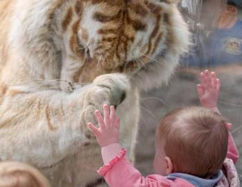 تجربه های تازه و جالب در زندگی کودک  - 3 تا 7 سالگی