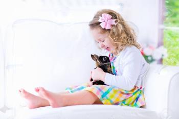 پرسش های کودکانه – میشه برام یک جوجه ( خرگوش ) بخرید؟